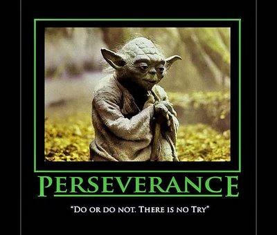 """""""Yoda Wisdom"""""""