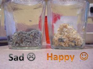 one week happy sad